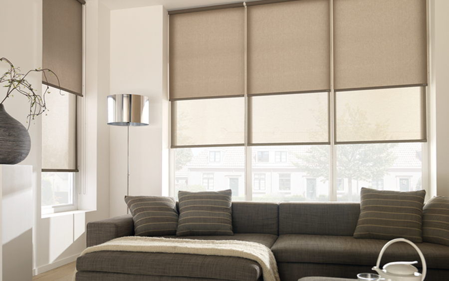 Translucent Amp Sunscreen Roller Blinds Factory Direct